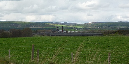 This was my view of the gorgeous little distillery as I passed on the road on my way to Culrain in late April.